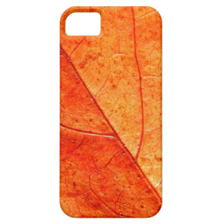 Autumn Leaf Close-up iPhone SE+5/5S Case