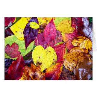 Autumn Leaf Collage Greeting Card