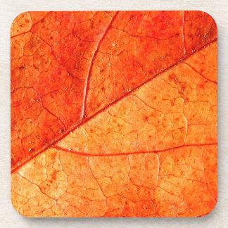 Autumn Leaf Hard Plastic Coasters