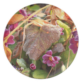 autumn leaf in early spring party plates