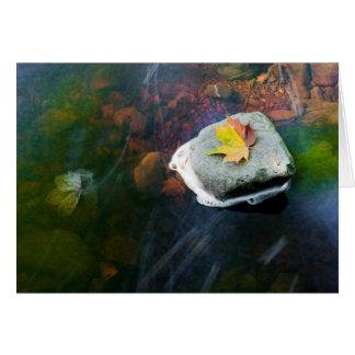 Autumn_Leaf_in_Stream Card