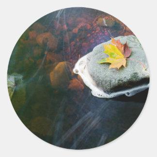 Autumn_Leaf_in_Stream Classic Round Sticker