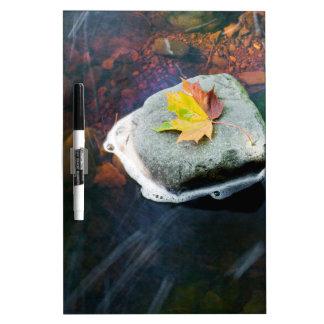 Autumn_Leaf_in_Stream Dry Erase Board