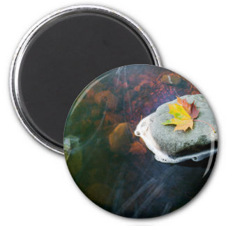 Autumn_Leaf_in_Stream Magnet