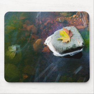 Autumn_Leaf_in_Stream Mouse Pad