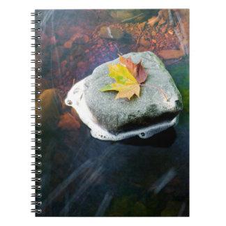 Autumn_Leaf_in_Stream Notebook