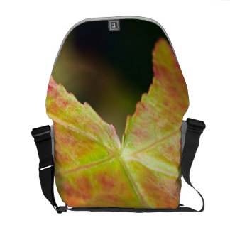 Autumn Leaf in the Forrest Courier Bag