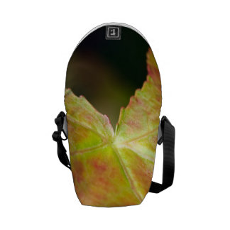 Autumn Leaf in the Forrest Courier Bags