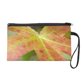 Autumn Leaf in the Forrest Wristlet Purses