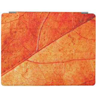 Autumn Leaf iPad Cover