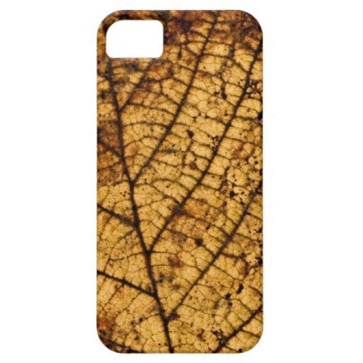 Autumn leaf iPhone 5 Case