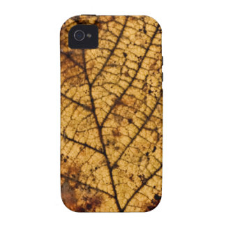 Autumn leaf iPhone Vibe Case iPhone 4/4S Covers
