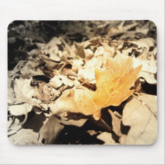 Autumn leaf mouse pads