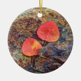 Autumn leaf on rock, California Christmas Ornament