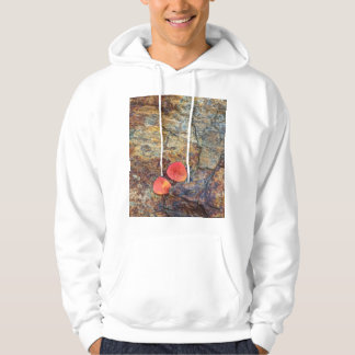 Autumn leaf on rock, California Hoodie
