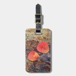 Autumn leaf on rock, California Luggage Tag