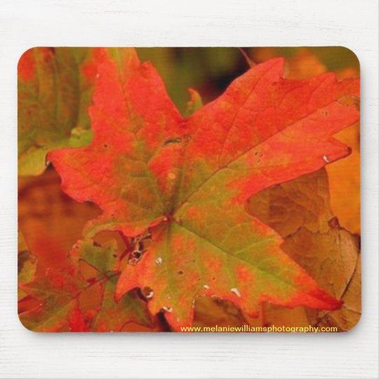 Autumn leaf pad mouse mat