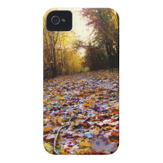 Autumn Leaf Path (HDR) Blackberry Bold Cases