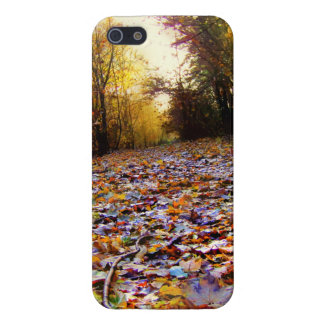 Autumn Leaf Path (HDR) Cases For iPhone 5