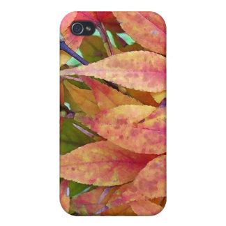 Autumn Leaf Pile iPhone 4/4S Cover