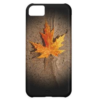 Autumn Leaf & Sand iPhone 5C Cases