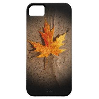 Autumn Leaf Sand iPhone 5 Cover
