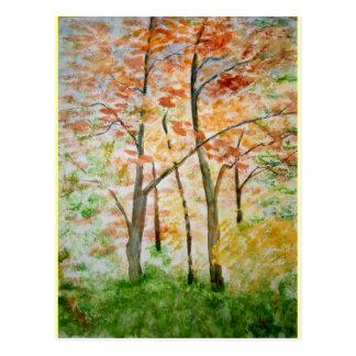 Autumn Leaf Tree Fall Nature Forest Destiny Season Postcards