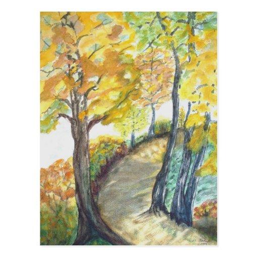 Autumn Leaf Tree Fall Nature Forest Destiny Season Post Cards