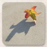 Autumn Leaf with Shadow