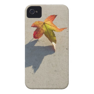 Autumn Leaf with Shadow Case-Mate iPhone 4 Cases