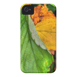 autumn leafs iPhone 4 cover