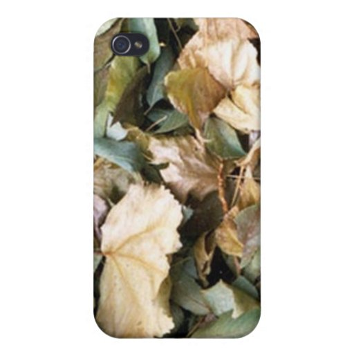 Autumn Leafs Case iPhone 4/4S Cover