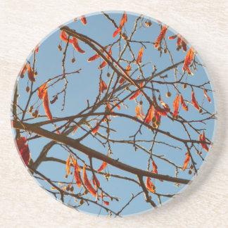 Autumn leafs coaster