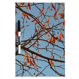 Autumn leafs Dry-Erase boards
