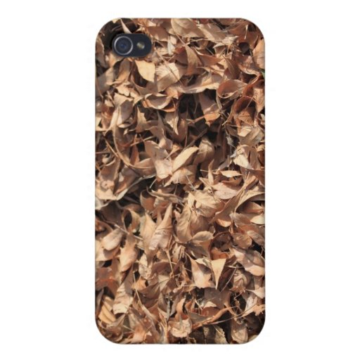 Autumn Leafs iPhone 4/4S Cases