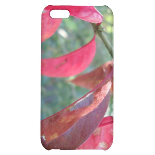 autumn leafs magenta cover for iPhone 5C
