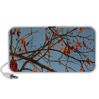 Autumn leafs travelling speaker