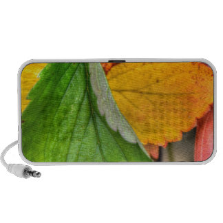 autumn leafs travel speakers