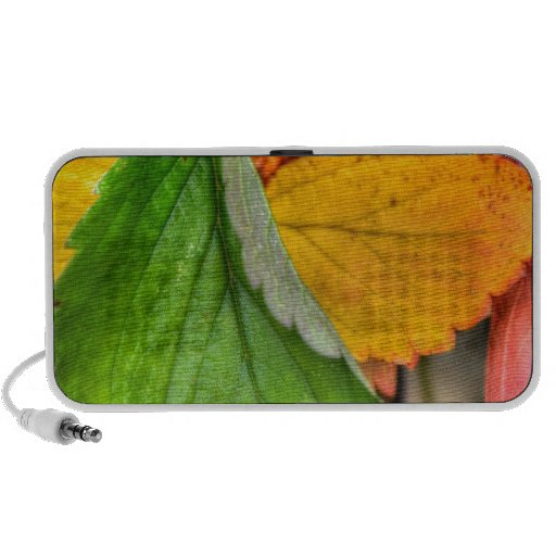 autumn leafs travel speakers