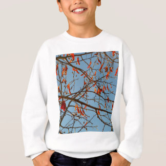 Autumn leafs sweatshirt