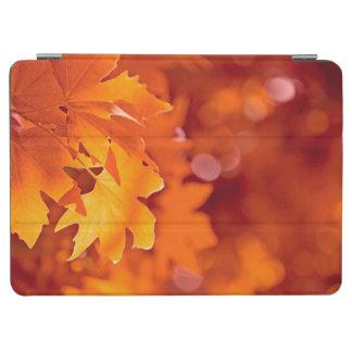 Autumn Leaves 2 iPad Air Cover