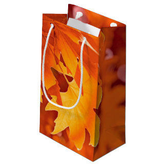 Autumn Leaves 2 Small Gift Bag