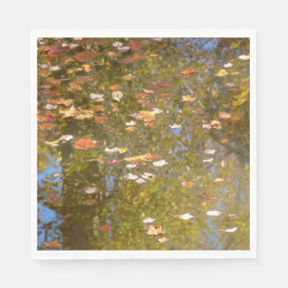 Autumn Leaves and Stream Reflection at Greenbelt Disposable Napkins