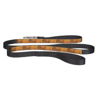 Autumn leaves background pet lead