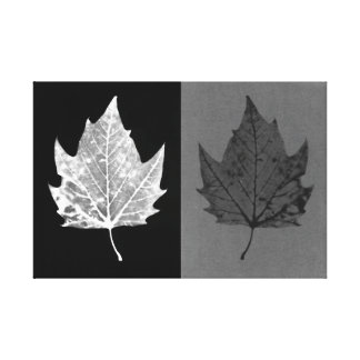 Autumn Leaves Black and White Canvas