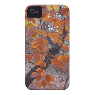 Autumn leaves Blackberry Bold case