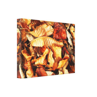Autumn leaves gallery wrapped canvas