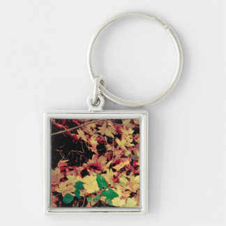 Autumn leaves carpet Silver-Colored square key ring