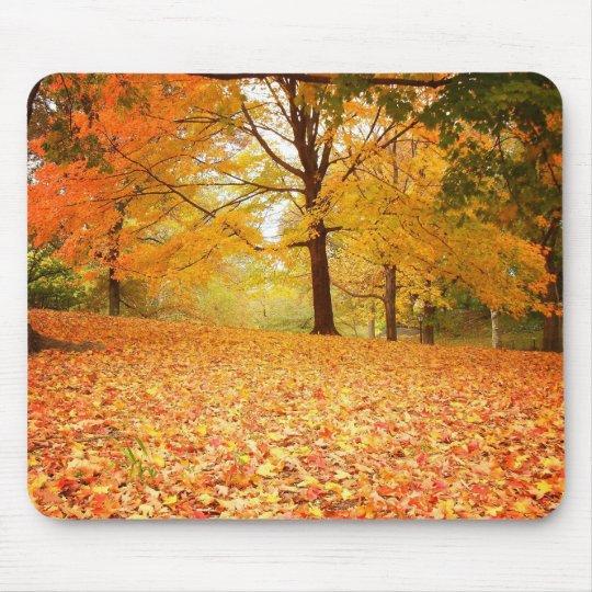 Autumn Leaves, Central Park, New York City Mouse Mat