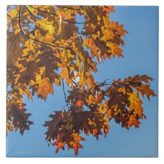 Autumn leaves ceramic photo tile